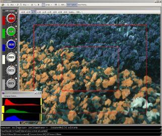 A&B Software ActiveGeni-Photo-1